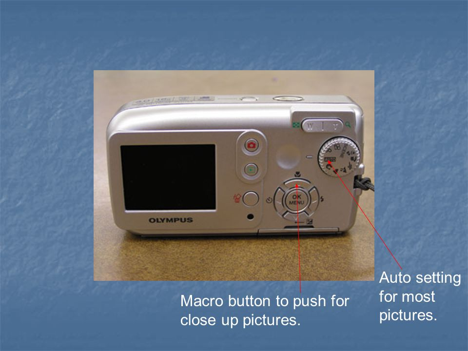 Macro button to push for close up pictures. Auto setting for most pictures.