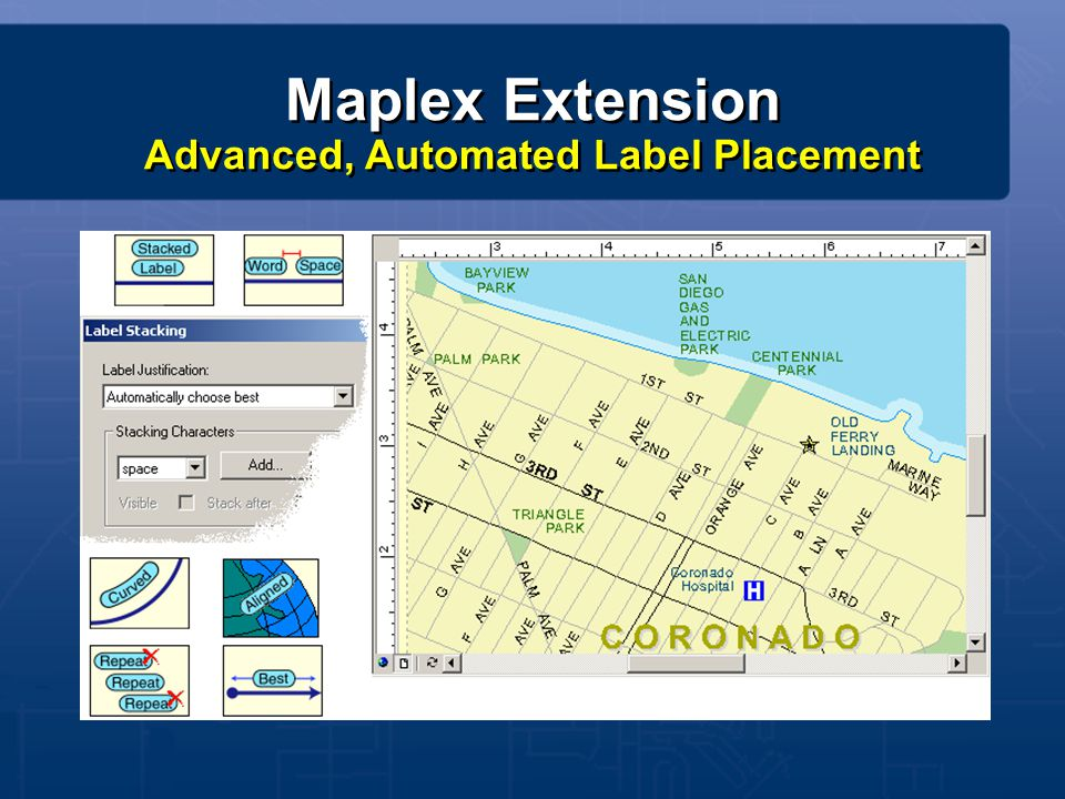 Maplex Extension Advanced, Automated Label Placement
