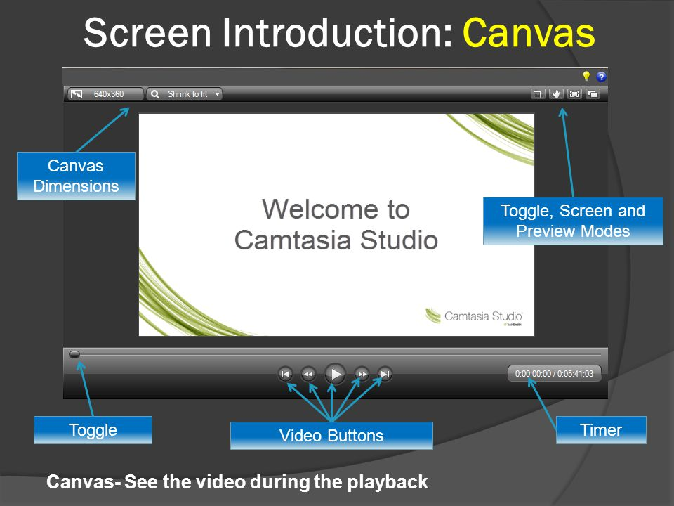 Screen Introduction: Canvas Video Buttons Timer Canvas Dimensions Toggle, Screen and Preview Modes Toggle Canvas- See the video during the playback