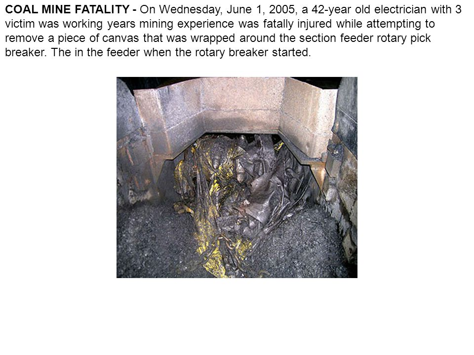 COAL MINE FATALITY - On Wednesday, June 1, 2005, a 42-year old electrician with 3 victim was working years mining experience was fatally injured while attempting to remove a piece of canvas that was wrapped around the section feeder rotary pick breaker.