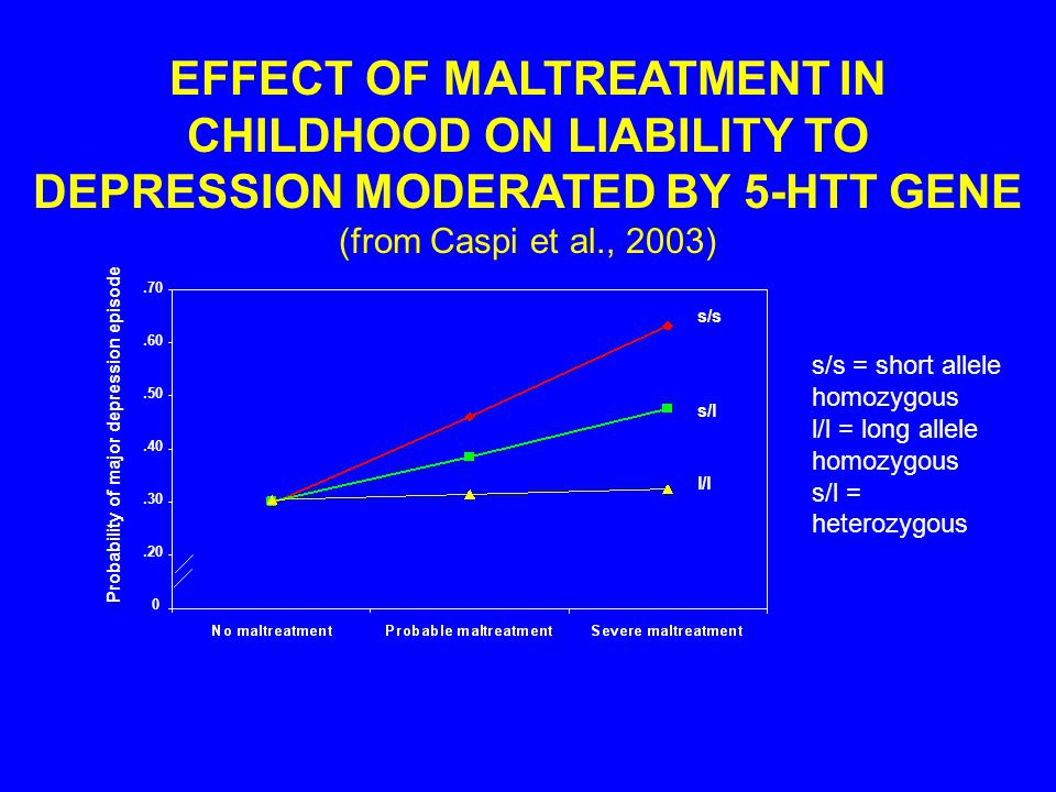 Probability of major depression episode EFFECT OF MALTREATMENT IN CHILDHOOD ON LIABILITY TO DEPRESSION MODERATED BY 5-HTT GENE (from Caspi et al., 2003) s/s s/l l/l.20.30.40.50.60.70 0 s/s = short allele homozygous l/l = long allele homozygous s/l = heterozygous