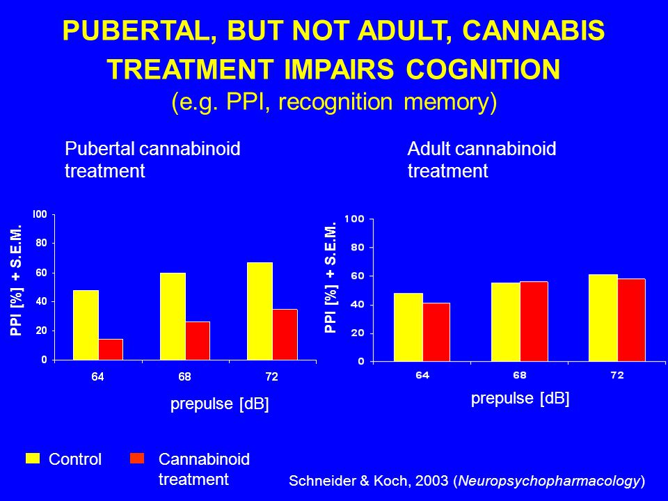PUBERTAL, BUT NOT ADULT, CANNABIS TREATMENT IMPAIRS COGNITION (e.g.