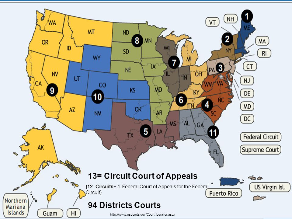 US Federal Courts http://www.uscourts.gov/Court_Locator.aspx 13= Circuit Court of Appeals (12 Circuits+ 1 Federal Court of Appeals for the Federal Cir