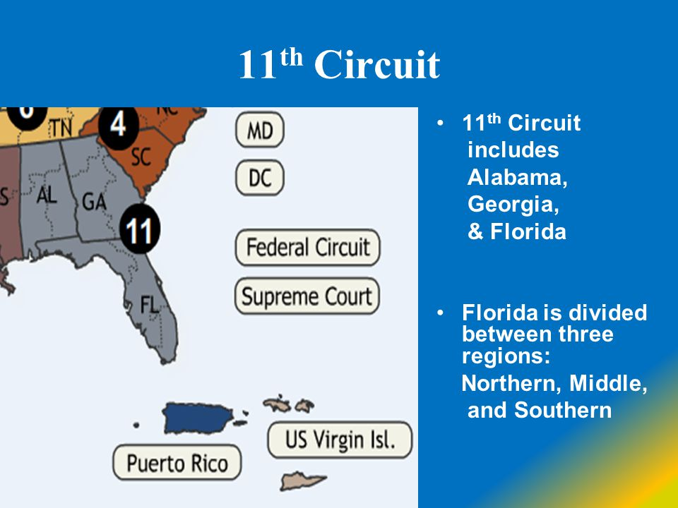 11 th Circuit includes Alabama, Georgia, & Florida Florida is divided between three regions: Northern, Middle, and Southern