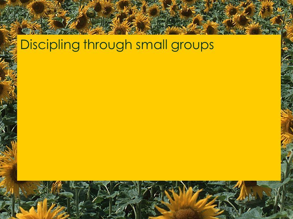 Discipling through small groups