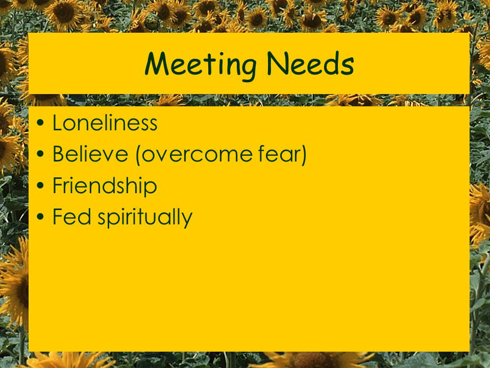 Meeting Needs Loneliness Believe (overcome fear) Friendship Fed spiritually