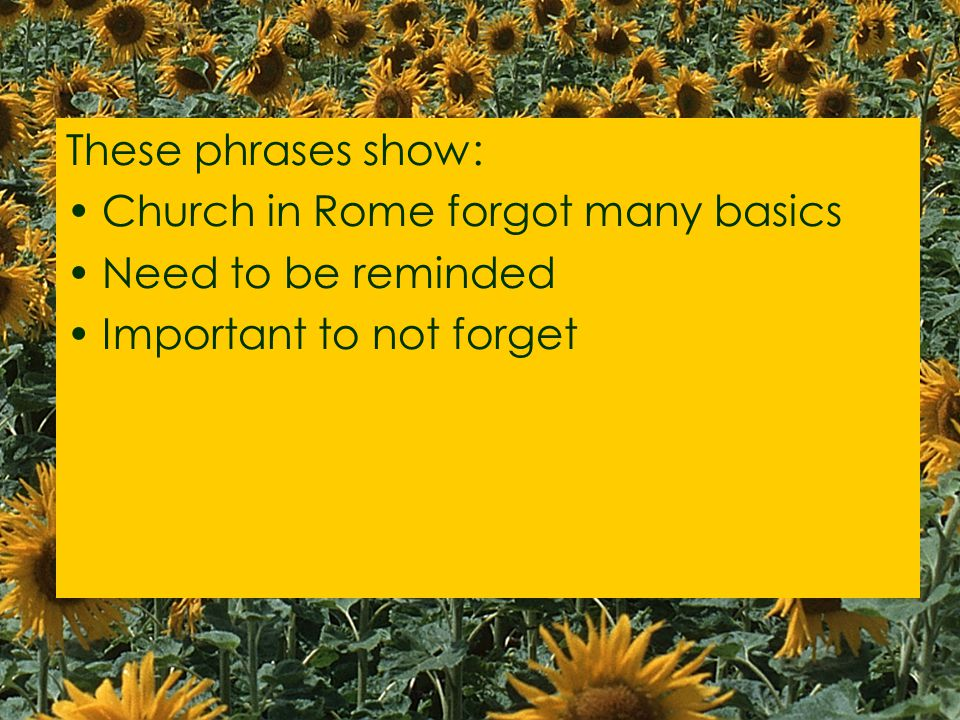 These phrases show: Church in Rome forgot many basics Need to be reminded Important to not forget