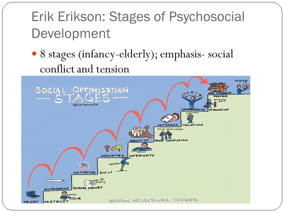 Erik Erikson: Stages of Psychosocial Development 8 stages (infancy-elderly); emphasis- social conflict and tension