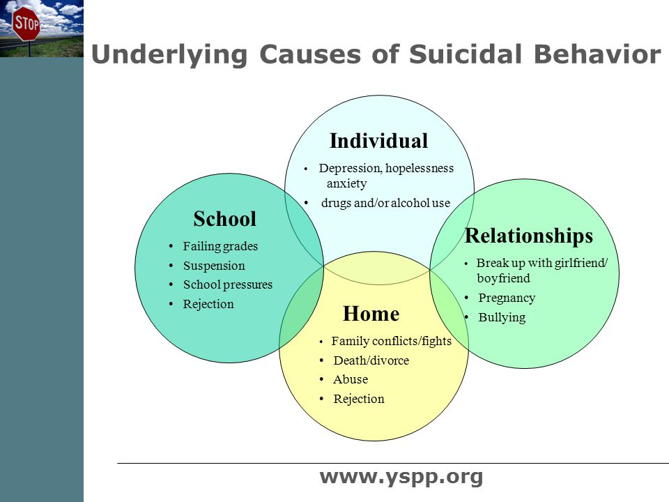 Individual  Depression, hopelessness anxiety  drugs and/or alcohol use Home Family conflicts/fights Death/divorce Abuse Rejection School Failing grades Suspension School pressures Rejection Relationships Break up with girlfriend/ boyfriend Pregnancy Bullying Underlying Causes of Suicidal Behavior www.yspp.org