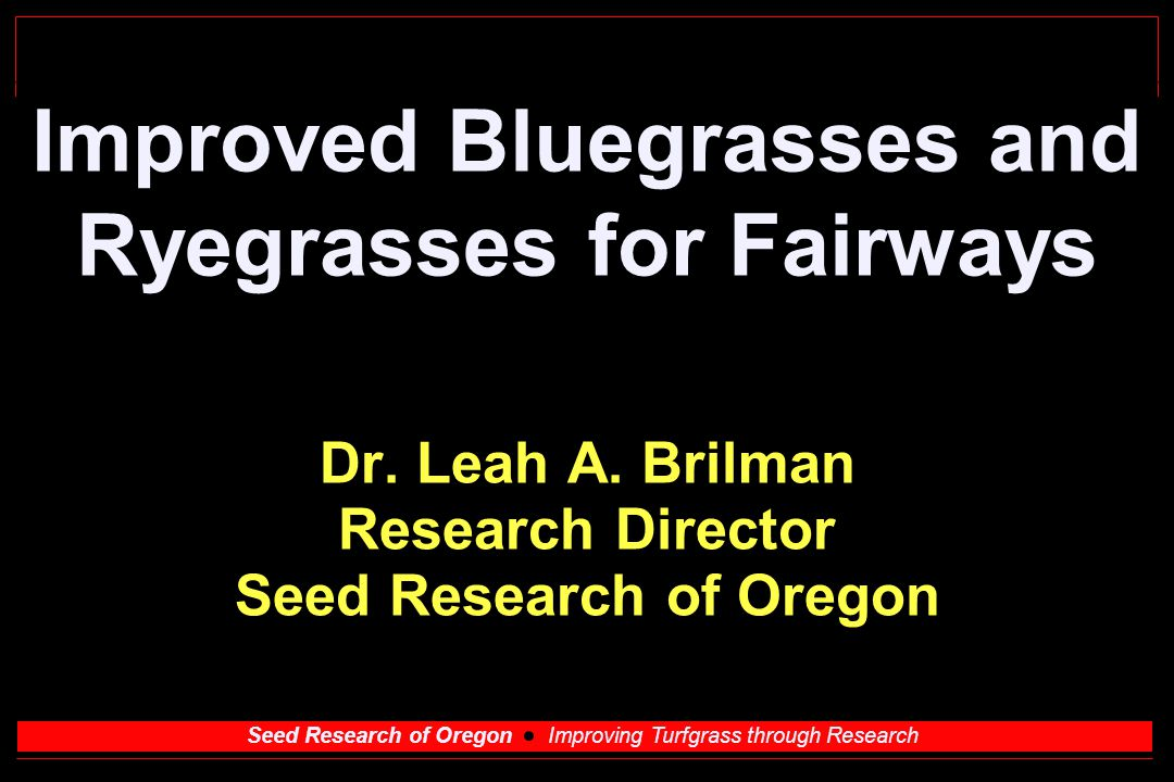 Seed Research of Oregon Improving Turfgrass through Research Bluegrass for fairways Requirements Summer patch resistance needed especially in high traffic areas Ability to take 1/2 inch cut Wear tolerant - entire season Rapid recovery from divots - should be on seeding program Resist Poa annua invasion Upright growth for good lie Powdery mildew, leaf spot resistance