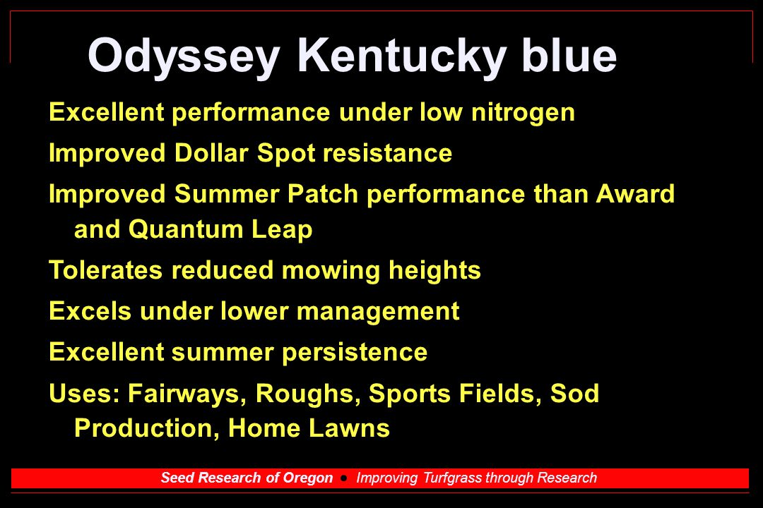 Seed Research of Oregon Improving Turfgrass through Research Odyssey Kentucky blue Excellent performance under low nitrogen Improved Dollar Spot resistance Improved Summer Patch performance than Award and Quantum Leap Tolerates reduced mowing heights Excels under lower management Excellent summer persistence Uses: Fairways, Roughs, Sports Fields, Sod Production, Home Lawns