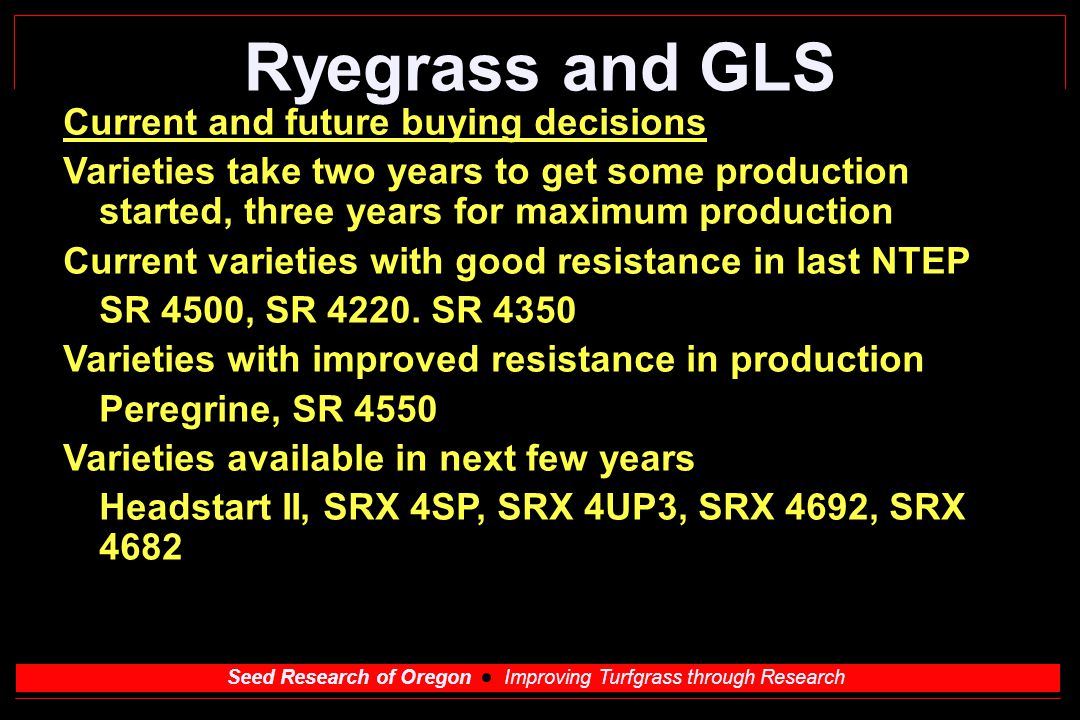 Seed Research of Oregon Improving Turfgrass through Research Ryegrass and GLS Current and future buying decisions Varieties take two years to get some production started, three years for maximum production Current varieties with good resistance in last NTEP SR 4500, SR 4220.