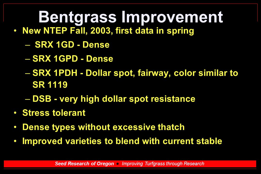 Seed Research of Oregon Improving Turfgrass through Research Bentgrass Improvement New NTEP Fall, 2003, first data in spring – SRX 1GD - Dense –SRX 1GPD - Dense –SRX 1PDH - Dollar spot, fairway, color similar to SR 1119 –DSB - very high dollar spot resistance Stress tolerant Dense types without excessive thatch Improved varieties to blend with current stable