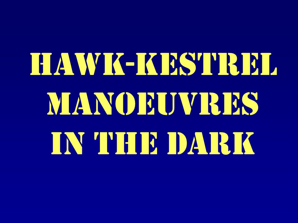 Hawk-kestrel Manoeuvres in the dark