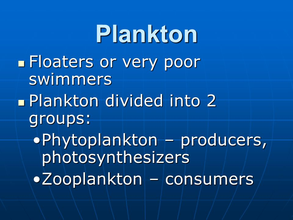Plankton Floaters or very poor swimmers Floaters or very poor swimmers Plankton divided into 2 groups: Plankton divided into 2 groups: Phytoplankton –