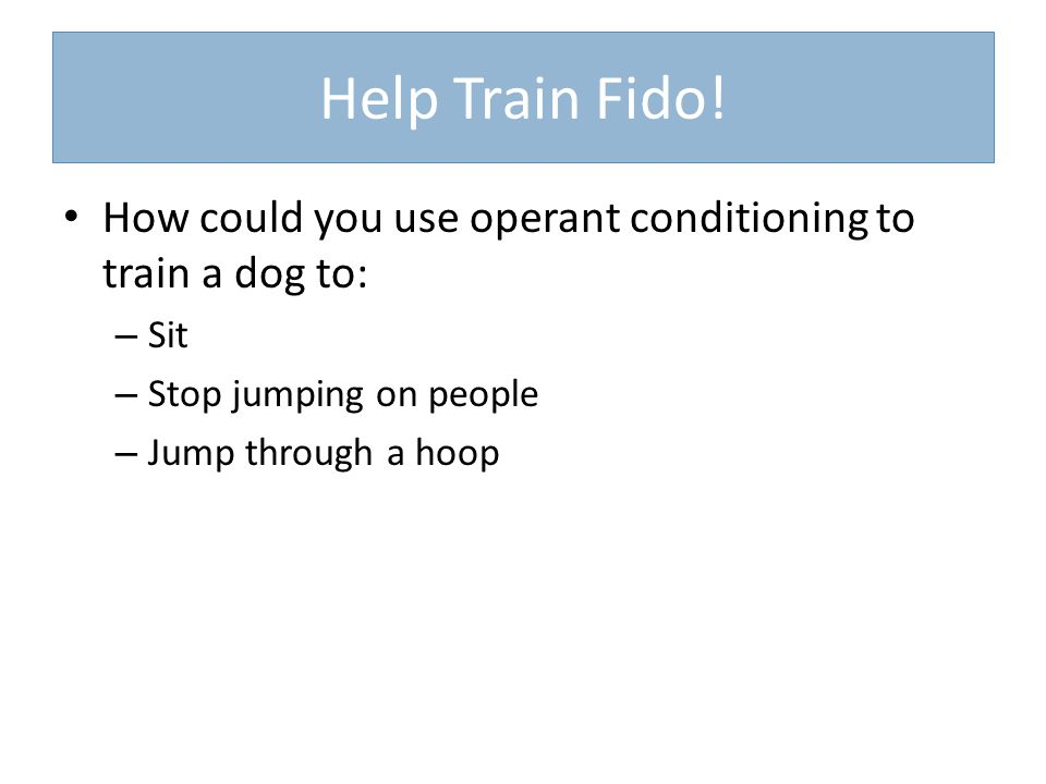Help Train Fido! How could you use operant conditioning to train a dog to: – Sit – Stop jumping on people – Jump through a hoop
