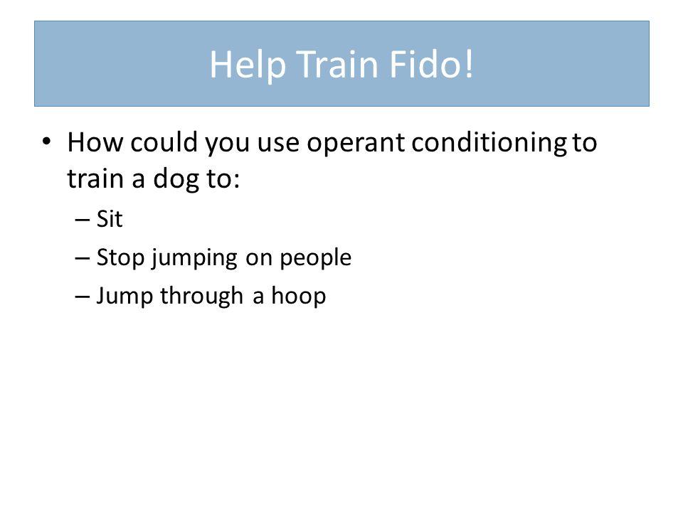 Help Train Fido.