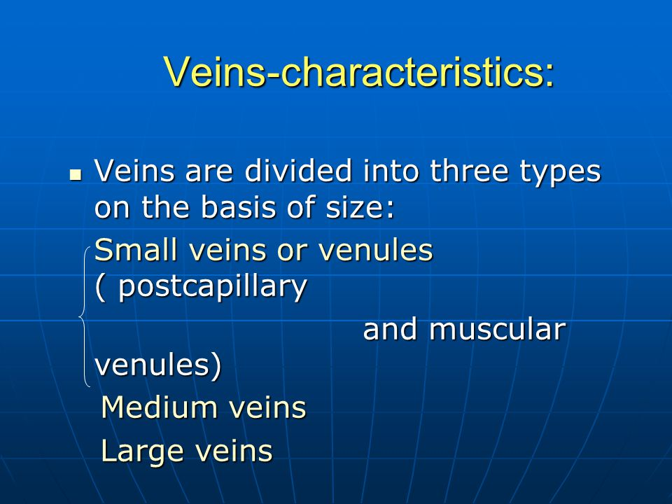 Veins-characteristics: Veins are divided into three types on the basis of size: Veins are divided into three types on the basis of size: Small veins or venules ( postcapillary Small veins or venules ( postcapillary and muscular venules) and muscular venules) Medium veins Medium veins Large veins Large veins
