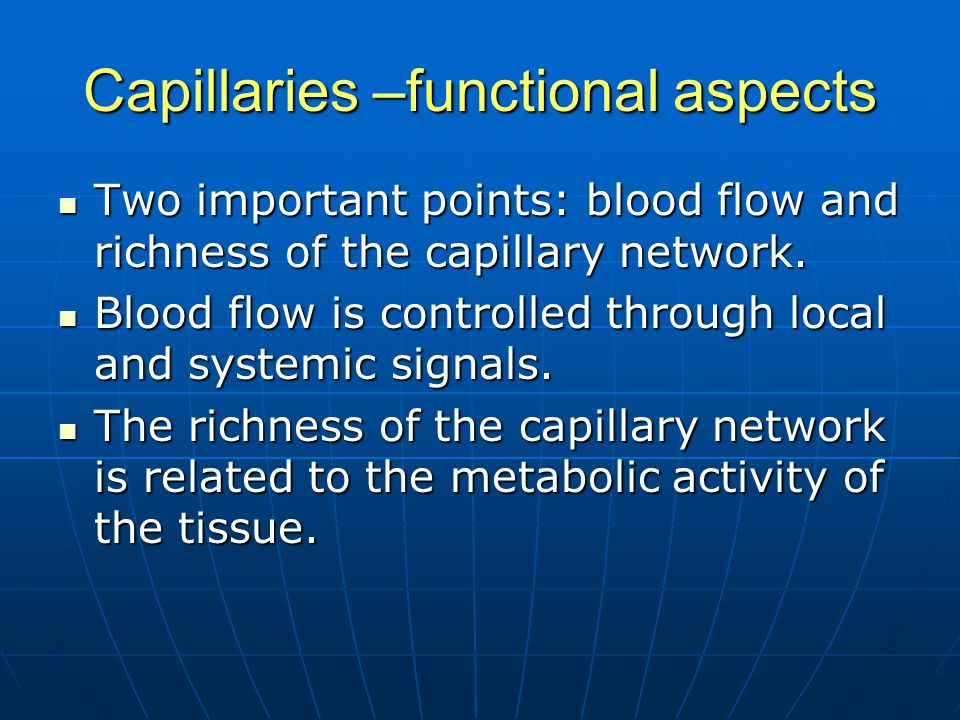 Capillaries –functional aspects Two important points: blood flow and richness of the capillary network. Two important points: blood flow and richness