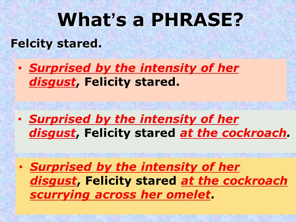 What's a PHRASE? Felcity stared. Surprised by the intensity of her disgust, Felicity stared. Surprised by the intensity of her disgust, Felicity stare