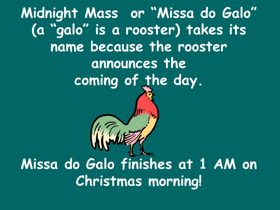 Midnight Mass or Missa do Galo (a galo is a rooster) takes its name because the rooster announces the coming of the day.