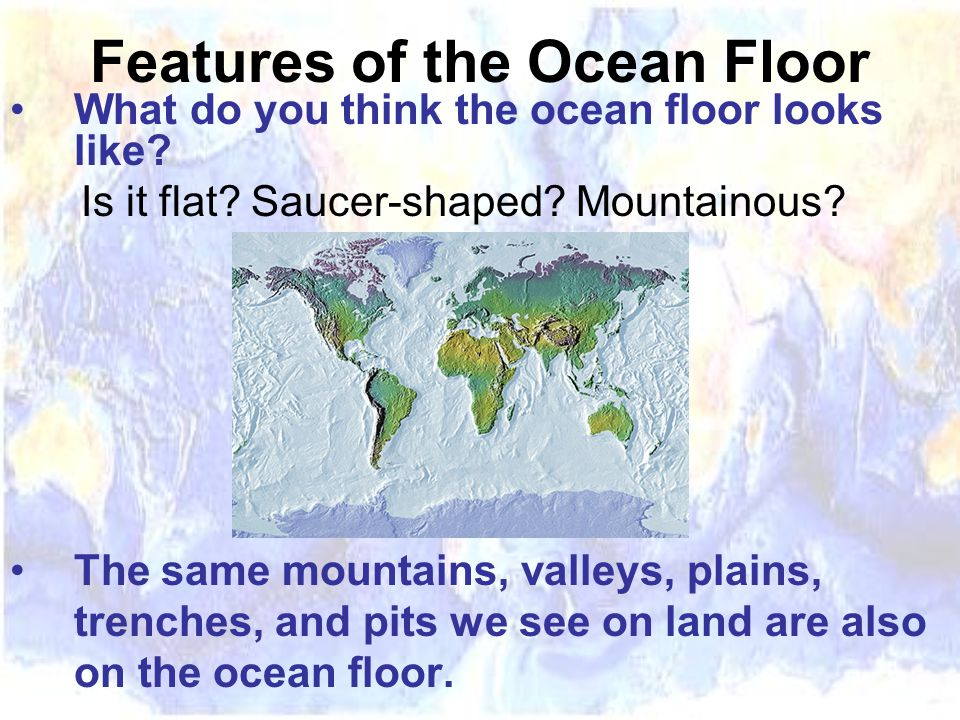 What do you think the ocean floor looks like. Is it flat.
