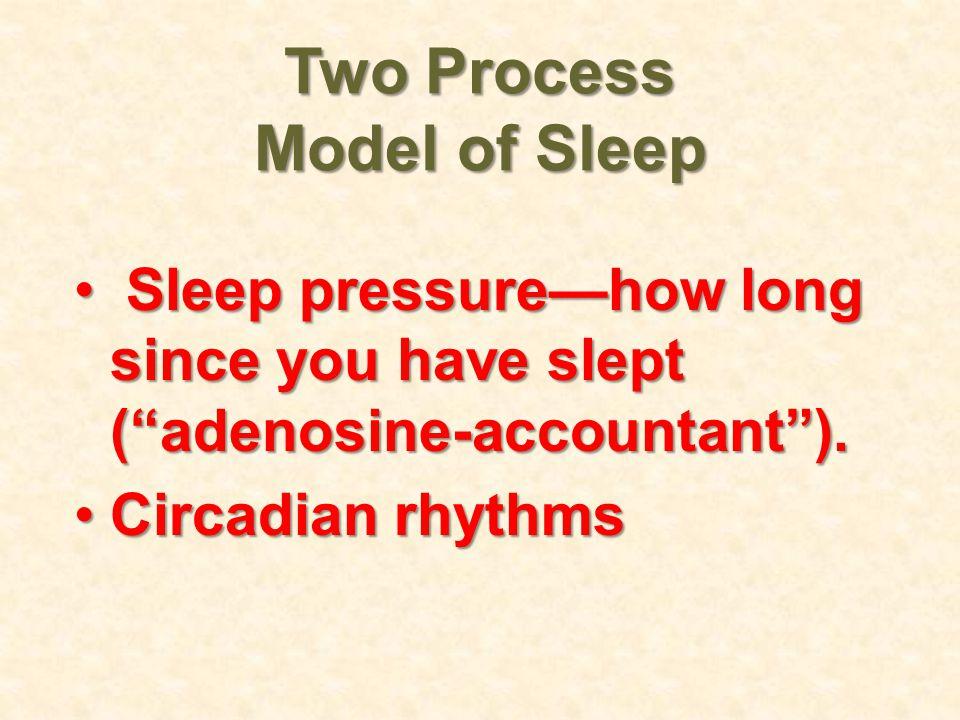 Two Process Model of Sleep Sleep pressure—how long since you have slept ( adenosine-accountant ).