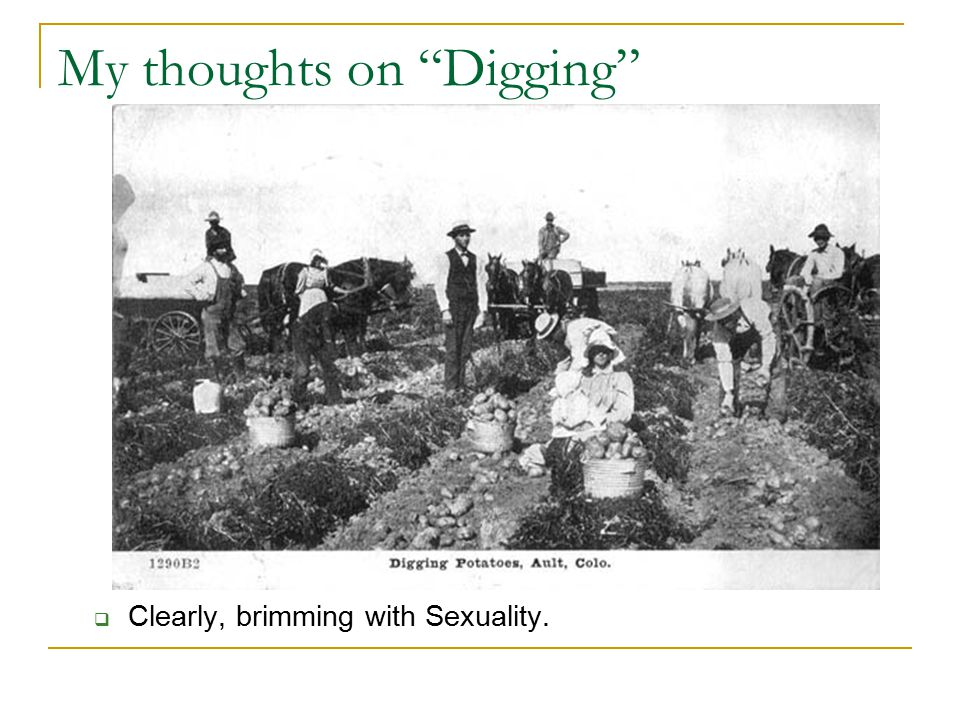 """My thoughts on """"Digging""""  Clearly, brimming with Sexuality."""