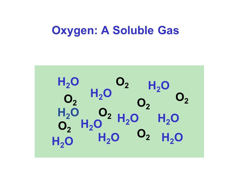 Oxygen: A Soluble Gas H2OH2O H2OH2O H2OH2O H2OH2O H2OH2O O2O2 H2OH2O H2OH2O H2OH2O O2O2 O2O2 O2O2 O2O2 O2O2 H2OH2O O2O2 H2OH2O