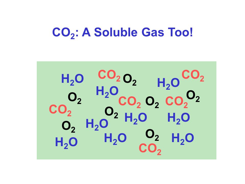 CO 2 : A Soluble Gas Too.