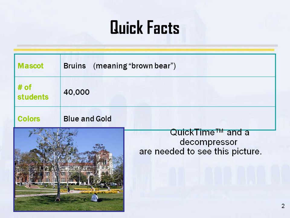2 Quick Facts MascotBruins (meaning brown bear ) # of students 40,000 ColorsBlue and Gold