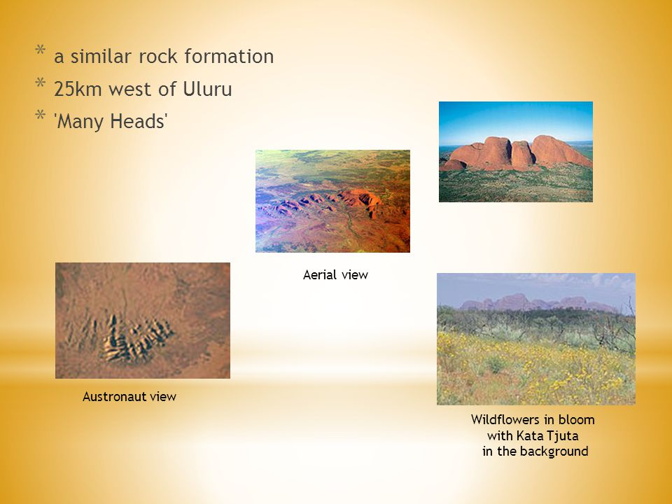 * a similar rock formation * 25km west of Uluru * Many Heads Wildflowers in bloom with Kata Tjuta in the background Austronaut view Aerial view