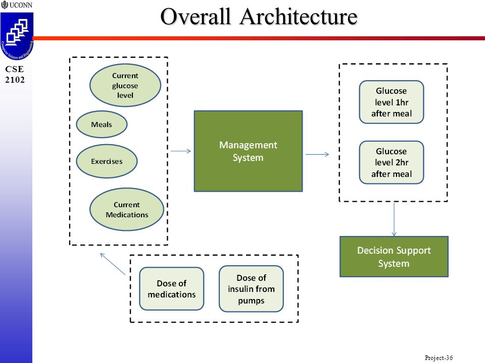 Project-36 CSE 2102 Overall Architecture