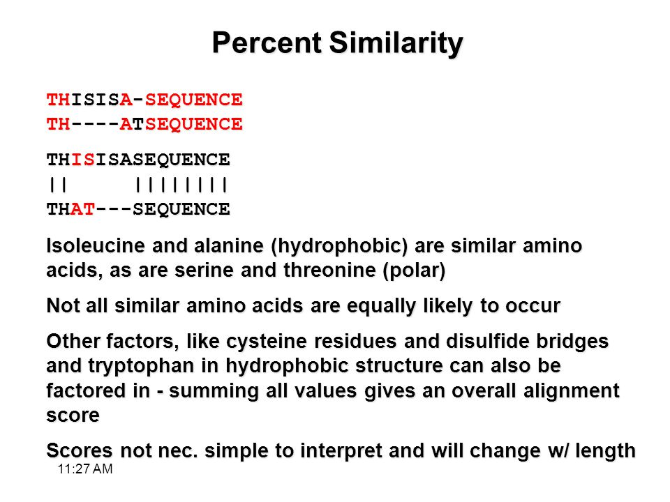 Percent Similarity THISISA-SEQUENCE TH----ATSEQUENCE THISISASEQUENCE || |||||||| THAT---SEQUENCE Isoleucine and alanine (hydrophobic) are similar amino acids, as are serine and threonine (polar) Not all similar amino acids are equally likely to occur Other factors, like cysteine residues and disulfide bridges and tryptophan in hydrophobic structure can also be factored in - summing all values gives an overall alignment score Scores not nec.