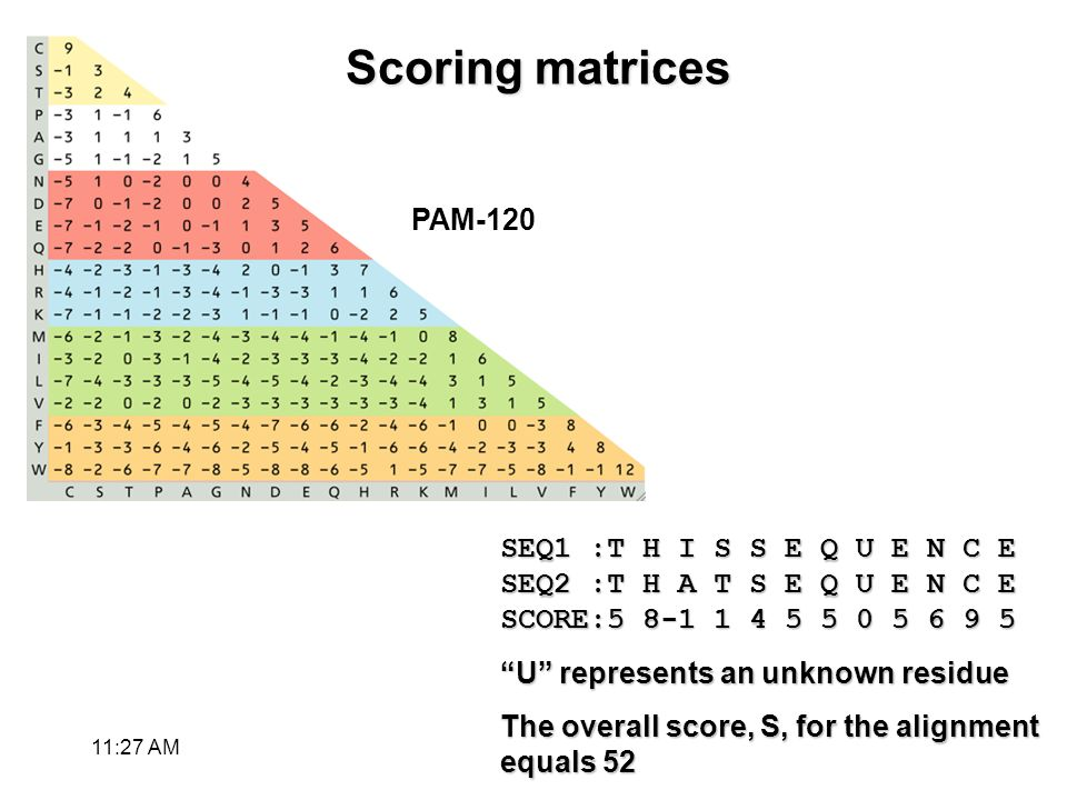 Scoring matrices SEQ1 :T H I S S E Q U E N C E SEQ2 :T H A T S E Q U E N C E SCORE:5 8-1 1 4 5 5 0 5 6 9 5 U represents an unknown residue The overall score, S, for the alignment equals 52 PAM-120 11:28 AM