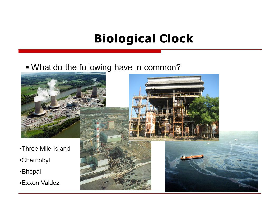 Biological Clock  What do the following have in common.