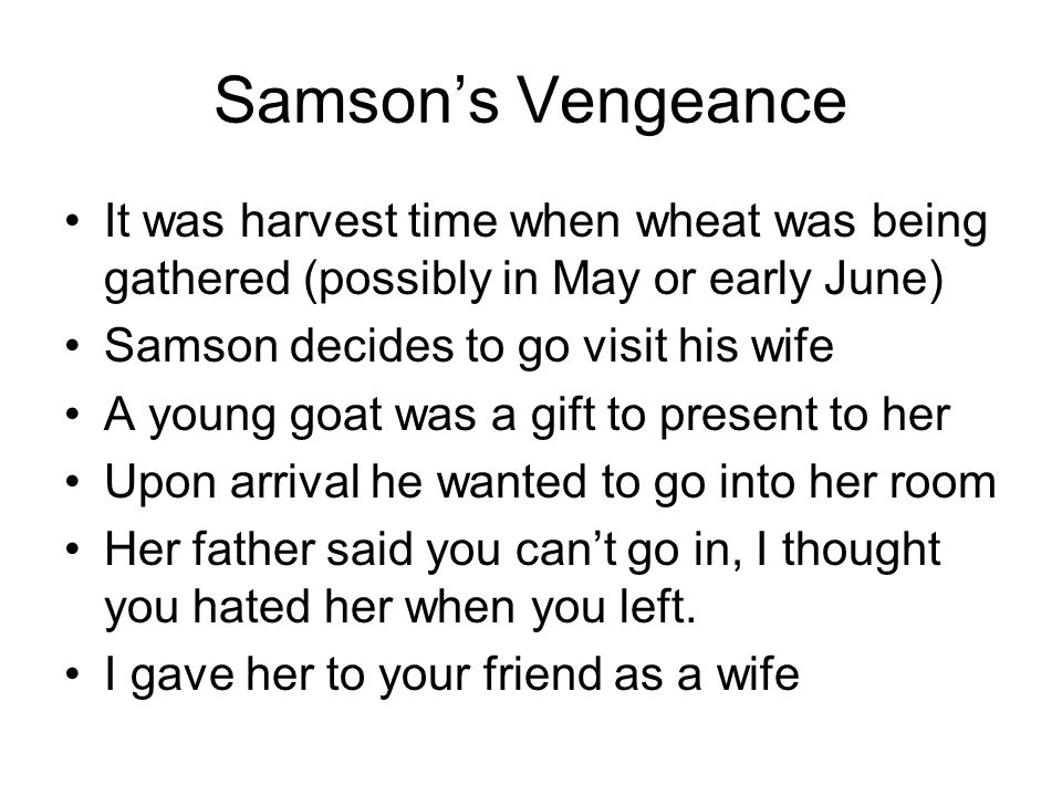 Samson's Vengeance It was harvest time when wheat was being gathered (possibly in May or early June) Samson decides to go visit his wife A young goat was a gift to present to her Upon arrival he wanted to go into her room Her father said you can't go in, I thought you hated her when you left.