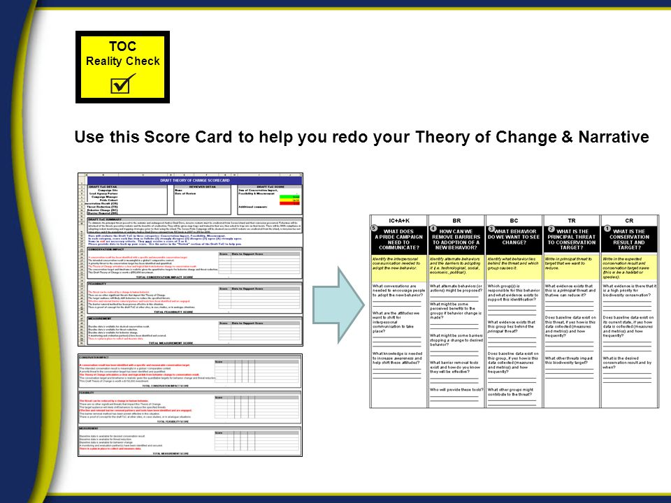 TOC Reality Check Use this Score Card to help you redo your Theory of Change & Narrative