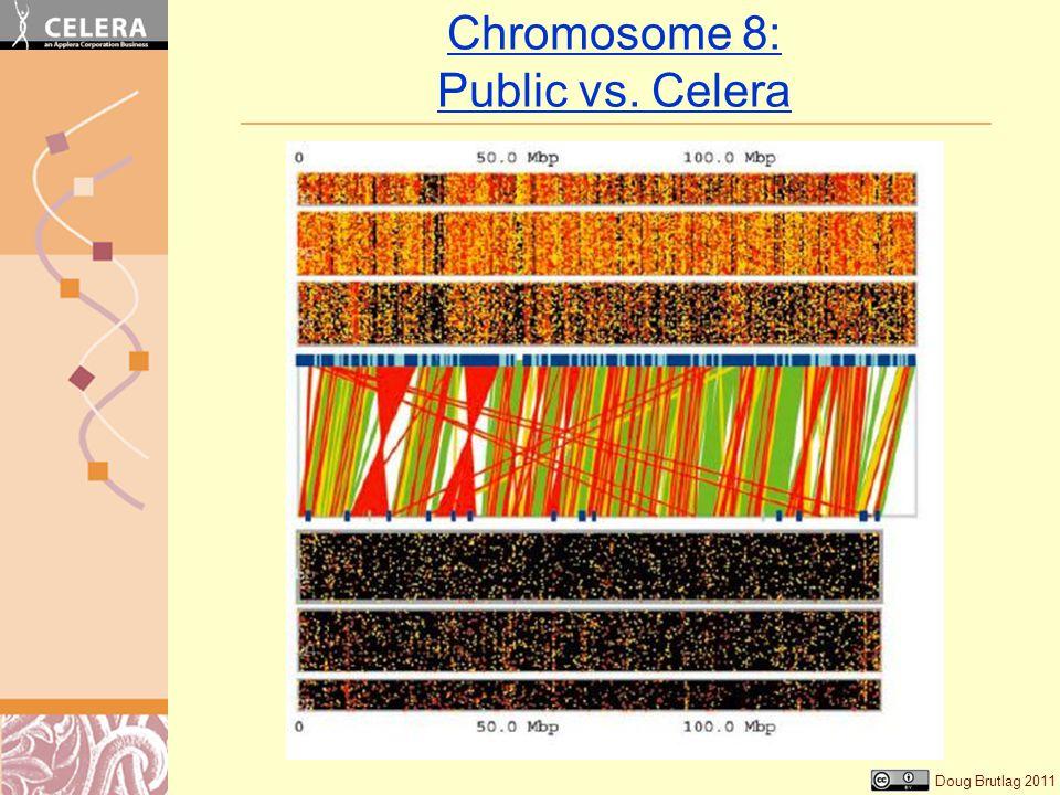 Doug Brutlag 2011 Chromosome 8: Public vs. Celera