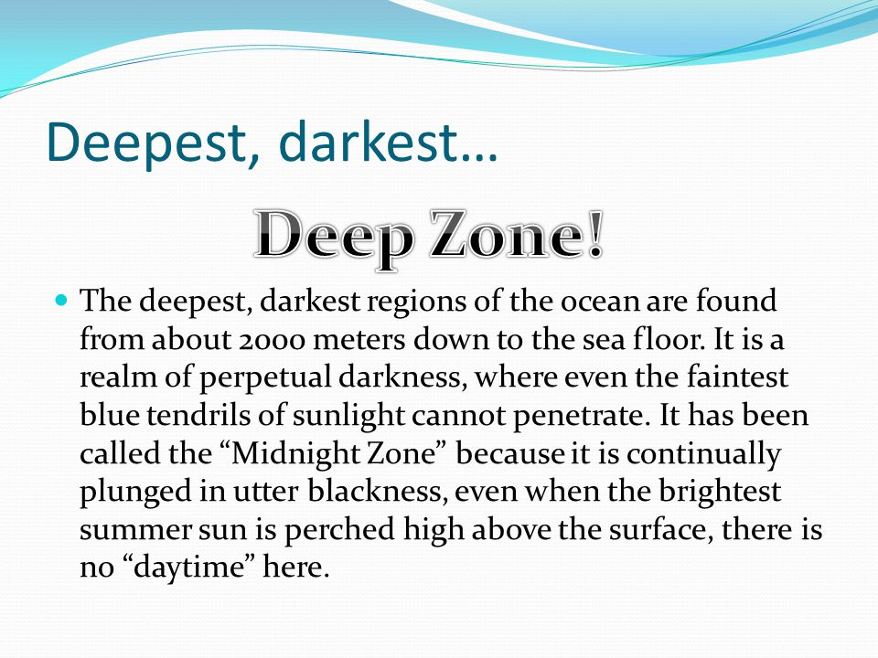Deepest, darkest… The deepest, darkest regions of the ocean are found from about 2000 meters down to the sea floor.