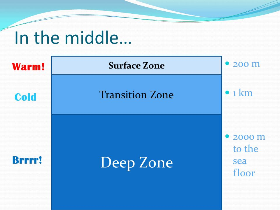 In the middle… 200 m 1 km 2000 m to the sea floor Deep Zone Transition Zone Surface Zone Warm.