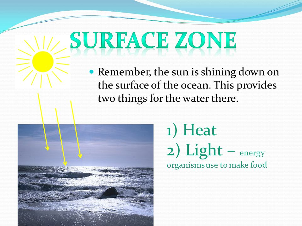Remember, the sun is shining down on the surface of the ocean.
