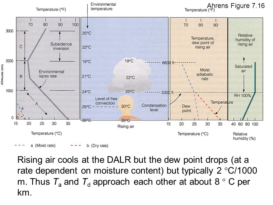 Rising air cools at the DALR but the dew point drops (at a rate dependent on moisture content) but typically 2 °C/1000 m.