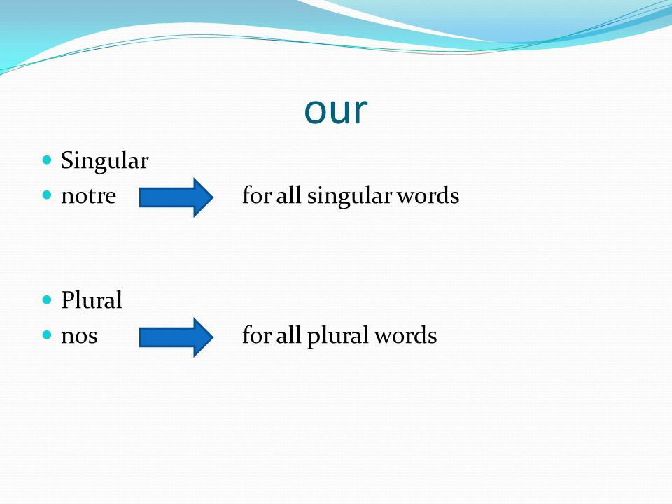 our Singular notre for all singular words Plural nos for all plural words
