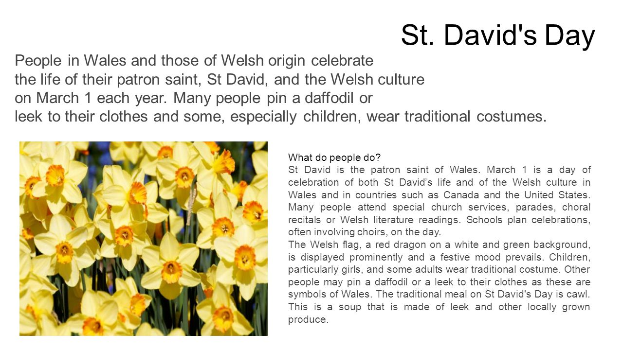 St. David s Day What do people do. St David is the patron saint of Wales.