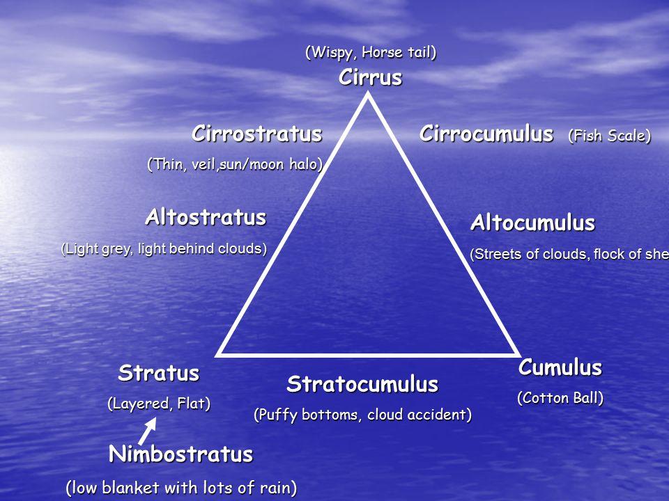 (Wispy, Horse tail) Cirrus Stratus (Layered, Flat) Cumulus (Cotton Ball) Cirrocumulus (Fish Scale) Stratocumulus (Puffy bottoms, cloud accident) Nimbo