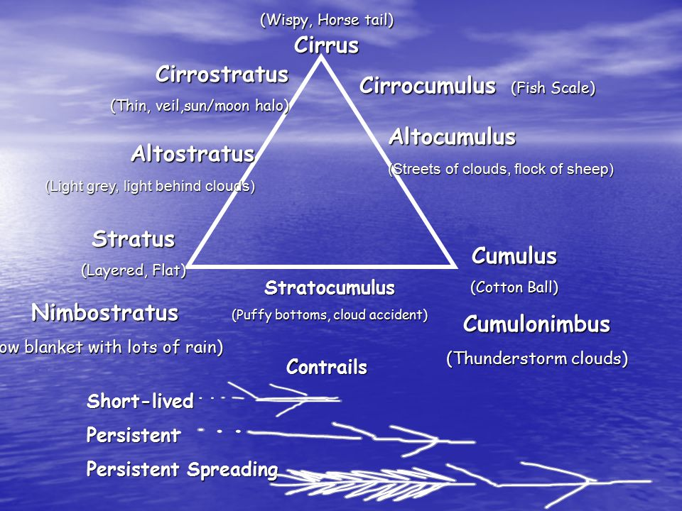 (Wispy, Horse tail) Cirrus Stratus (Layered, Flat) Cumulus (Cotton Ball) Cirrocumulus (Fish Scale) Stratocumulus (Puffy bottoms, cloud accident) Nimbostratus (low blanket with lots of rain) Altocumulus (Streets of clouds, flock of sheep) Altostratus (Light grey, light behind clouds) Cirrostratus (Thin, veil,sun/moon halo) Cumulonimbus (Thunderstorm clouds) ContrailsShort-livedPersistent Persistent Spreading
