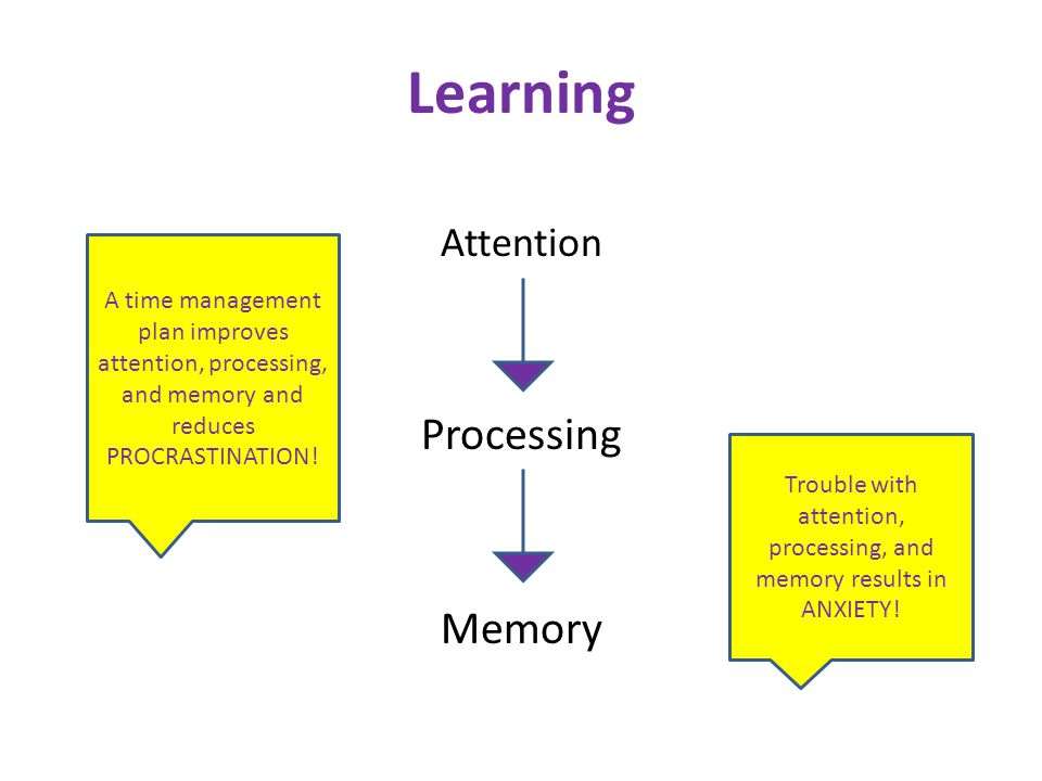 Learning Attention Processing Memory Trouble with attention, processing, and memory results in ANXIETY.