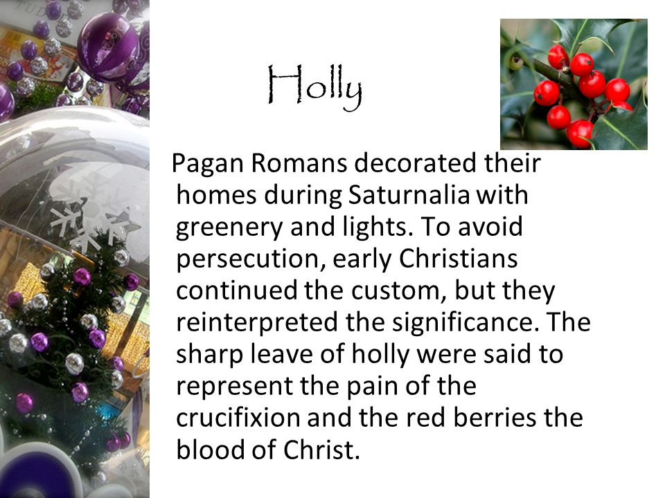 Pagan Romans decorated their homes during Saturnalia with greenery and lights.