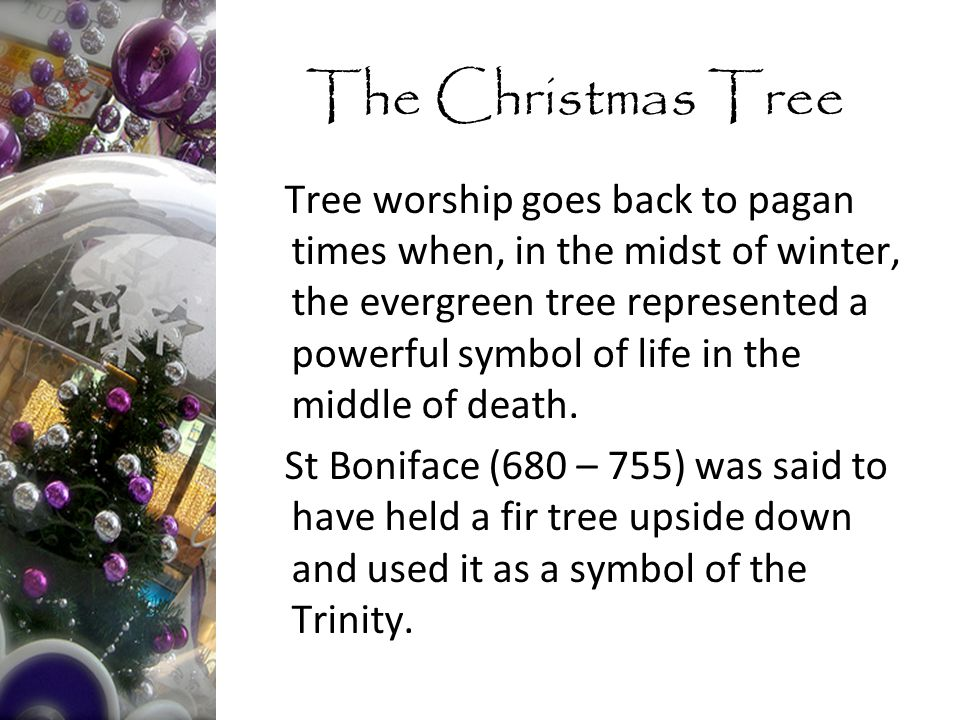 Tree worship goes back to pagan times when, in the midst of winter, the evergreen tree represented a powerful symbol of life in the middle of death.